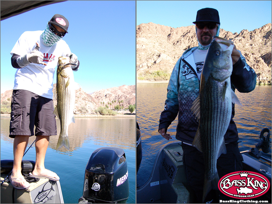 Bass king news feed bass fishing reports and news for Willow beach fishing